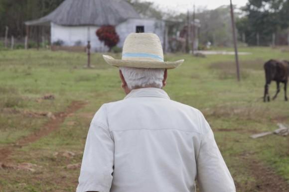 De regreso. Foto: Alejandro Ramírez Anderson