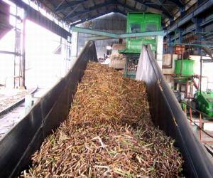 industria-azucarera