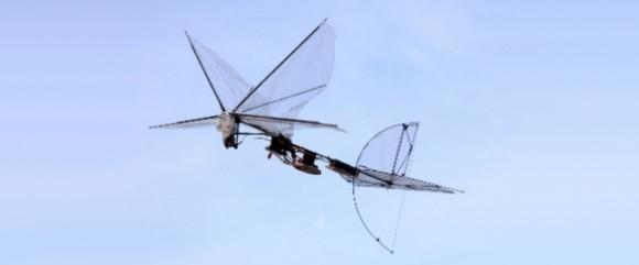 iai-butterfly-uav