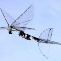 Cuando mate un mosquito, piense que quizás es un drone (+ Video)