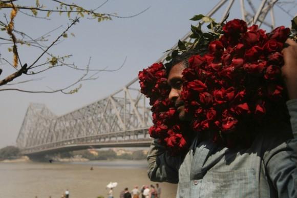 Un vendedor de rosas carga pasa junto al puente Howrah en el día de San Valentín, en Calcuta. Foto: Piyal Adhikary / EFE