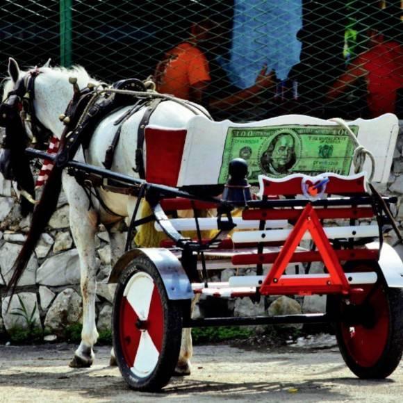 """Carretón de caballos con """"decorado"""" con un billete de cien dólares. Foto: Desmond Boylan"""