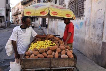 Vendedor de frutas habanero