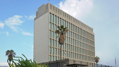 """Les """"attaques Acoustiques"""" Contre Les Diplomates Américains à Cuba Pourraient être Dues à... Des Grillons"""