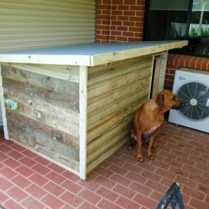 small kennel $520