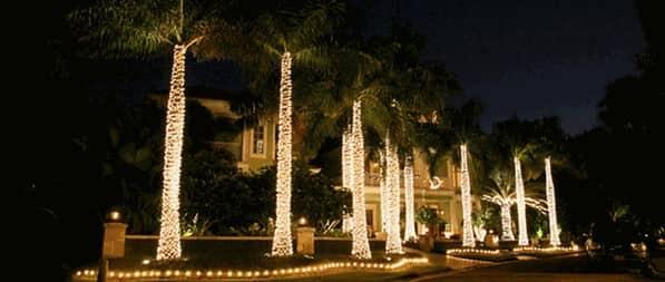 christmas lights miami # 19