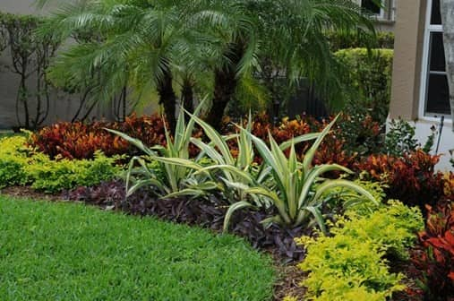 tips landscaping and gardening