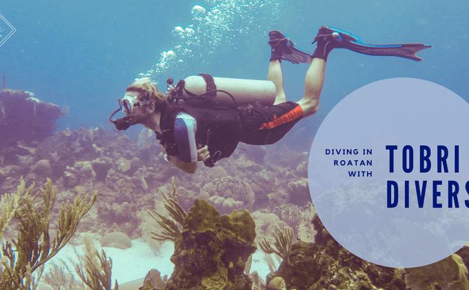 Diving in Roatan: Tobri Divers