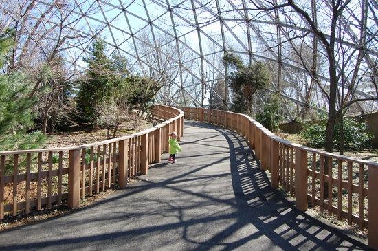 Zoológico de Queens que ver y haccer en nueva york