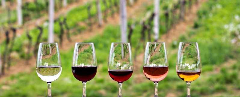 vinos de ensenada para acompañar la gastronomia de baja california