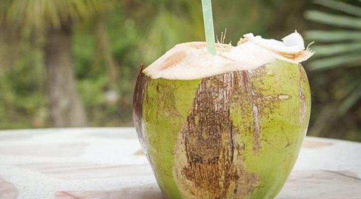 cocos frios de nayarit