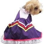 vestido de jalisco para mascotas