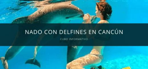 nado con delfines cancun