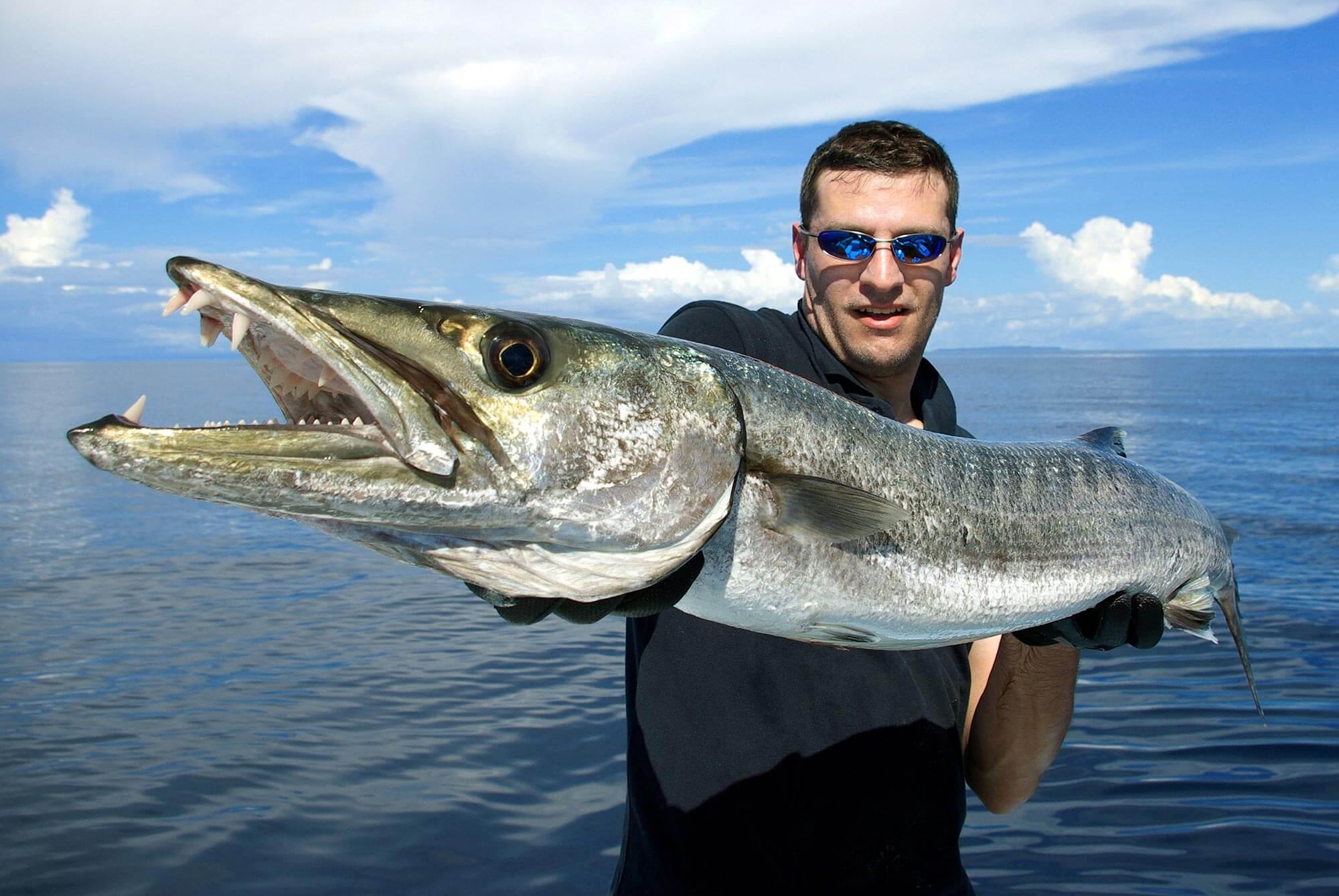 pesca deportiva una actividad en holbox