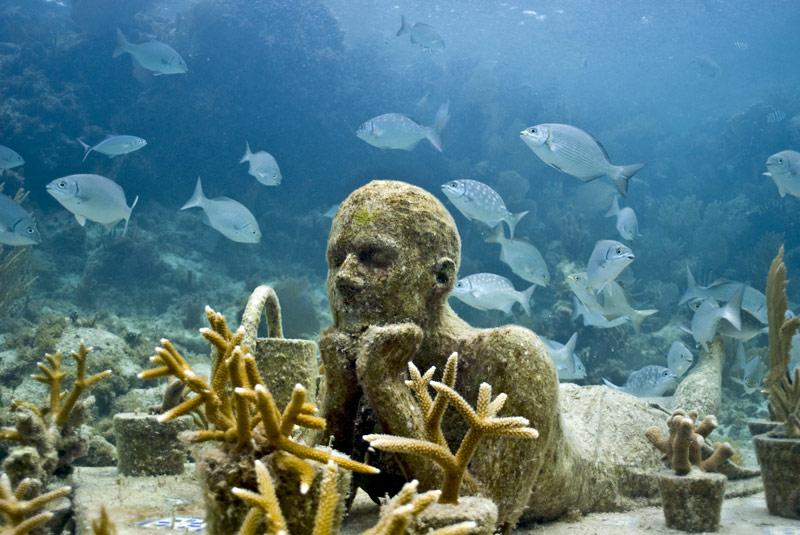 museo subacuatico de cancun vida marina