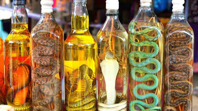 Vino de serpiente bebida tipica de china