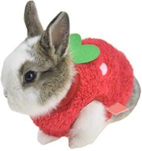 Ropa cálida de invierno para conejo