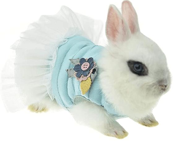 Vestido azul para conejo