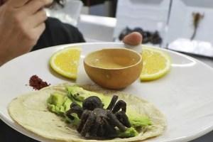 Tarántulas horneada gastronomia exotica de mexico
