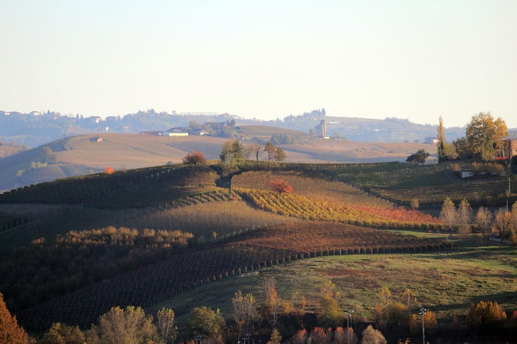 Langhe Hills Barolo 20 italian red wines