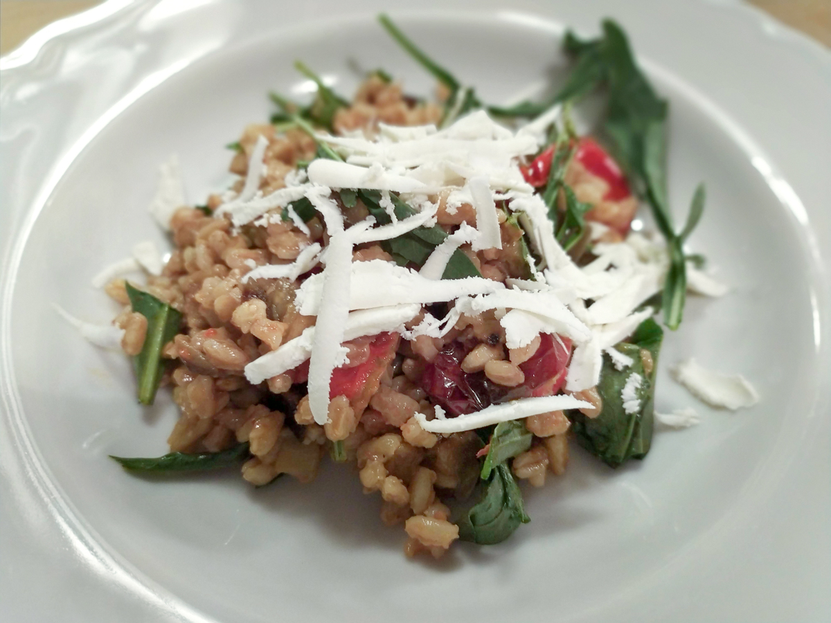 Pearled Spelt salad with eggplants and salted ricotta