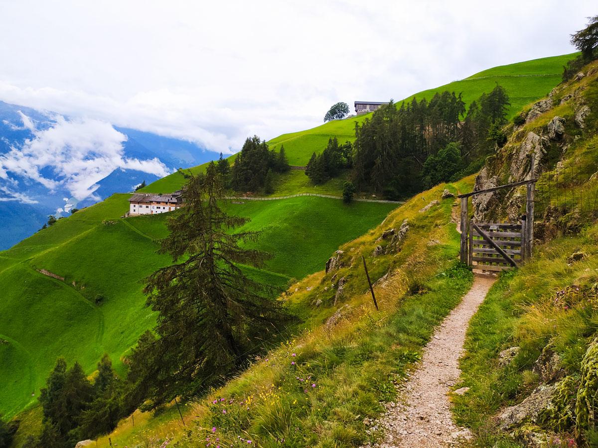 trekking walkway around the farm on the mountain