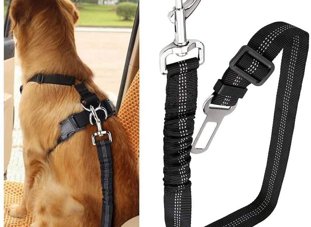 cinta di sicurezza cane auto