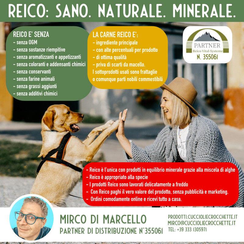 pet food Reico, cuccioli e crocchette partner Reico