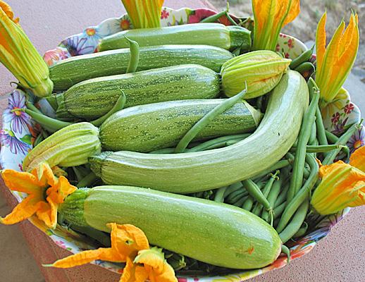 Farro e zucchine di Toscana  Cucina Naturale