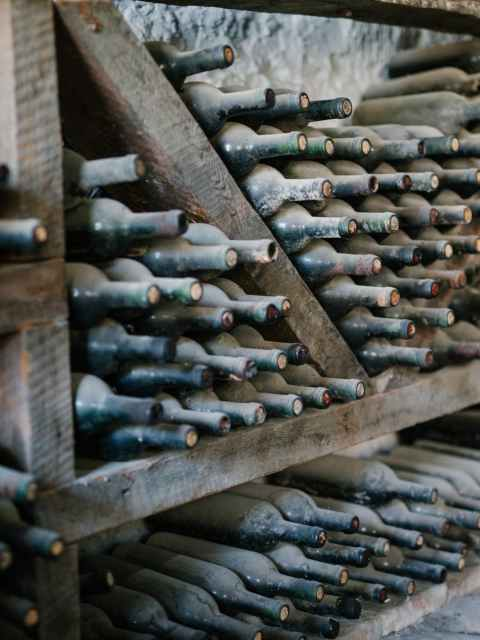 rows of bottles of wine covered with dust