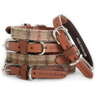 DESIGNER DOG COLLAR in Tweed
