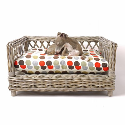 Raised Rattan Dog Bed With Great Dot Mattress - & Cat