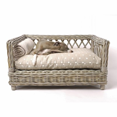 Raised Rattan Dog Bed With Dotty Taupe Mattress - Charley