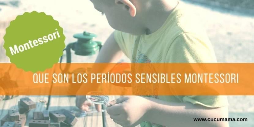 Periodos sensible montessori