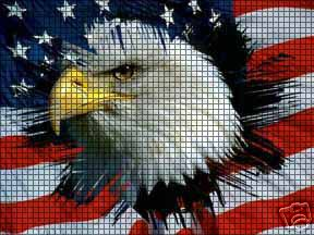 Eagle In The Flag Crochet Pattern