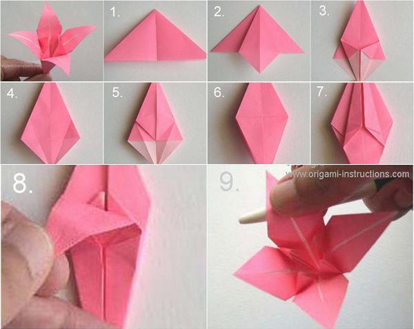 star flower origami diagram wiring for ceiling fan with light switch australia 40 flowers you can do art and design