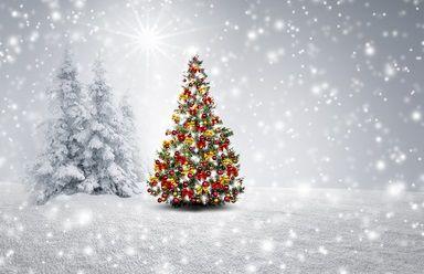 El abeto de Navidad
