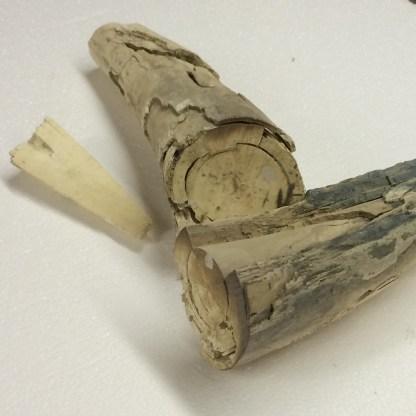 Mammoth Ivory-445