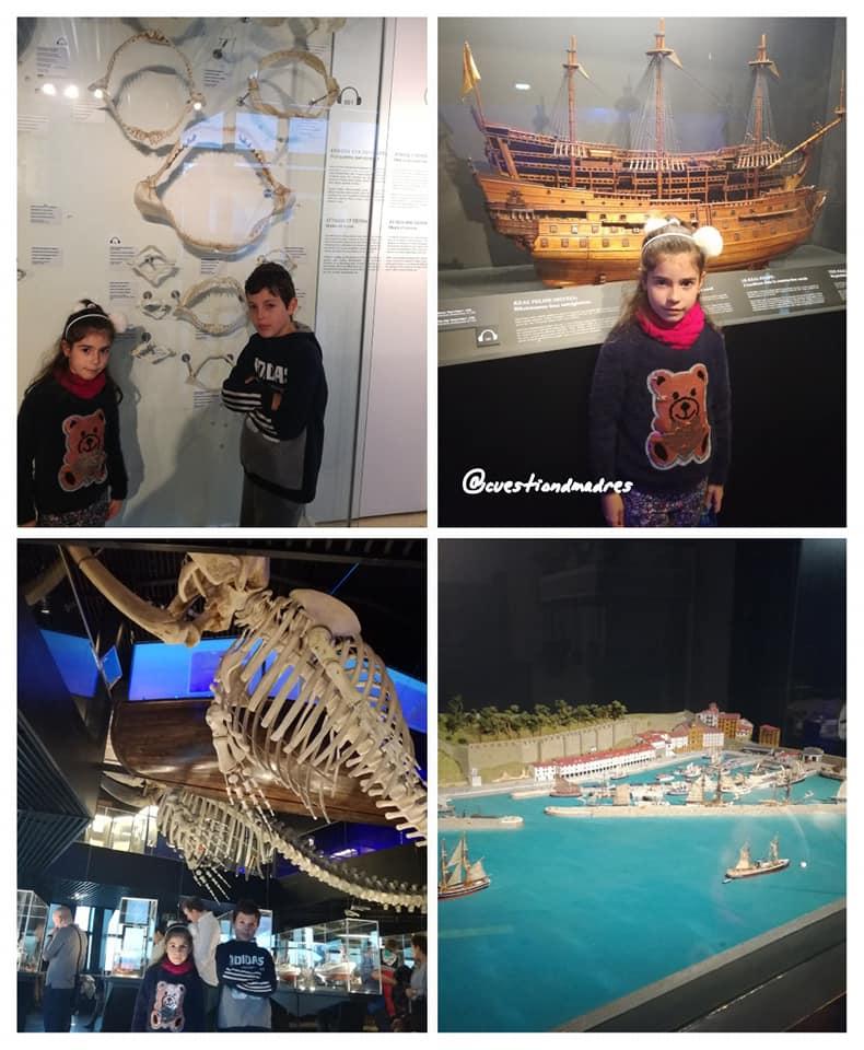 Algunas de las cosas que se pueden ver en el Museo del Aquarium de Donosti