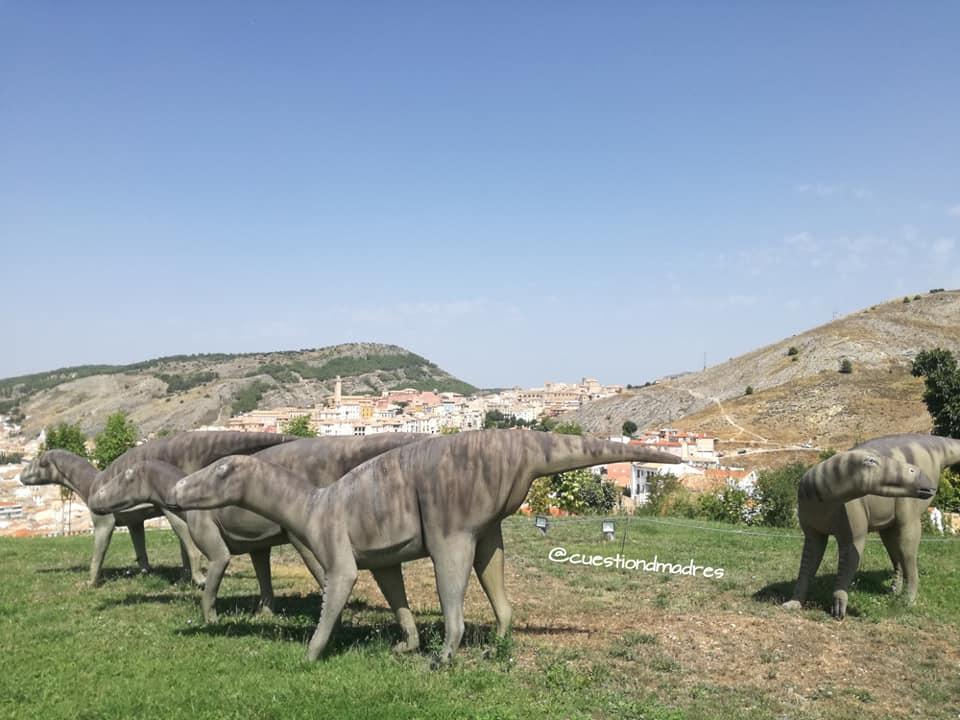 Museo de Paleontología de Castilla-La Mancha. Vistas de Cuenca ciudad