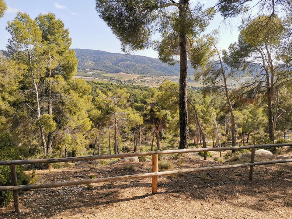 Vistas que se pueden disfrutar desde el área recreativa ermita San Pascual