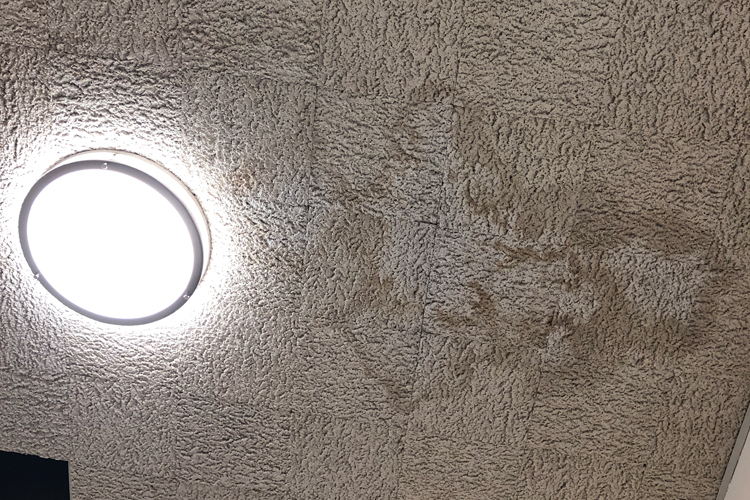 Rain water stains on the ceiling of the newly remodel photojournalism room.