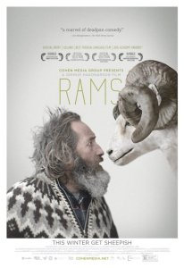 rams-valle-carneros