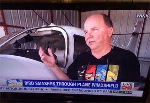 Pájaro se estrella en el parabrisas del avión