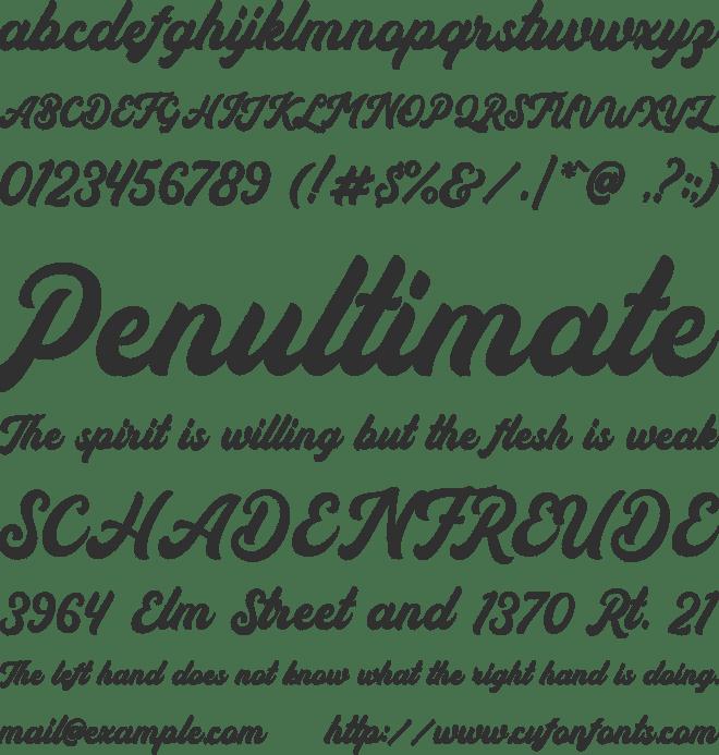 Auckland Script Free Font : Download Free for Desktop
