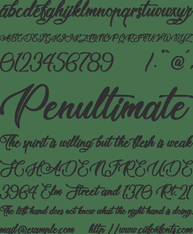 Tale of Hawks Font : Download Free for Desktop & Webfont