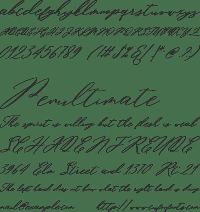 Miolleta Script Font : Download Free for Desktop & Webfont