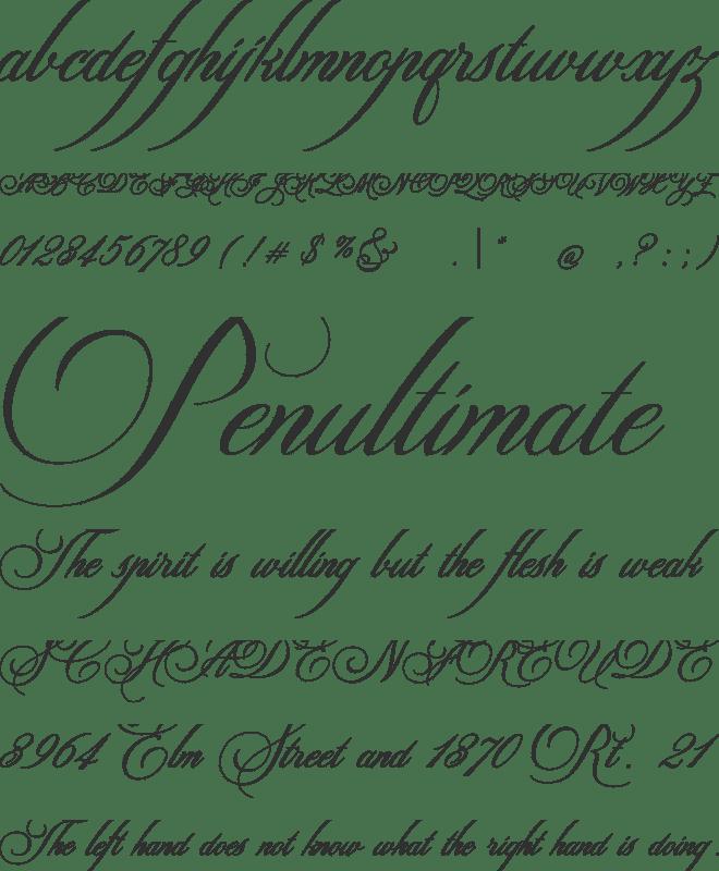 Switzerland Font : Download Free for Desktop & Webfont