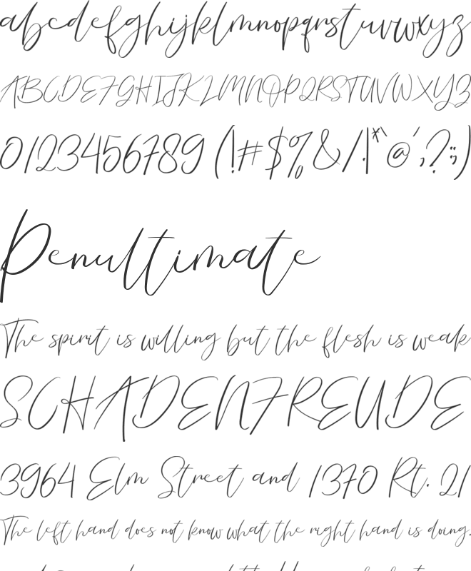 La Vista Font : Download Free for Desktop & Webfont