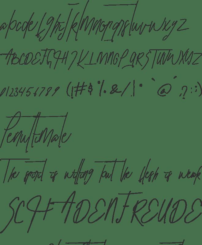 Hillary Font : Download Free for Desktop & Webfont